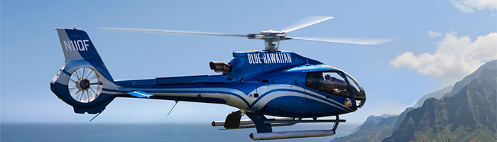 H130 Capabilities and Services