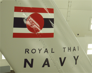 Paint Example_Royal Thai Navy
